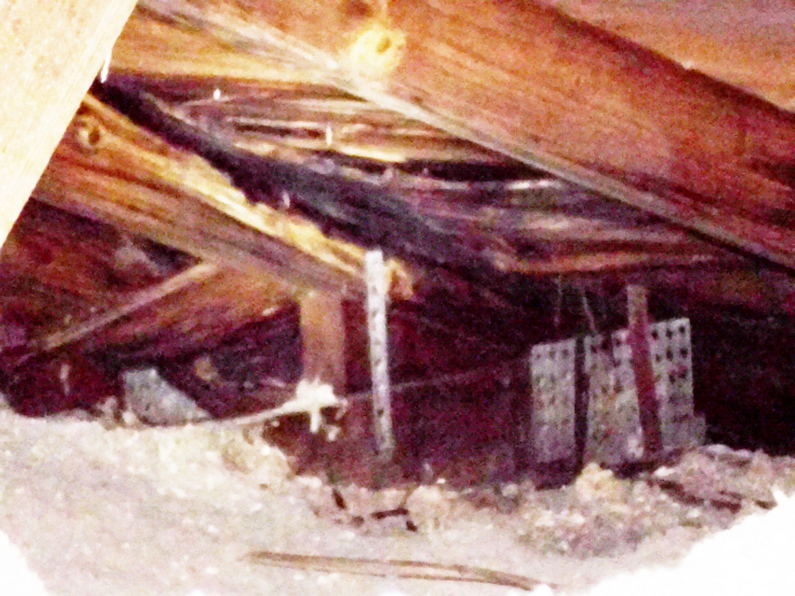 Picture of damaged roof structure and sheathing due to active leak